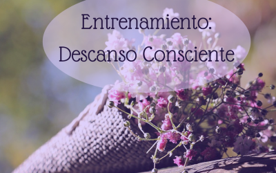 DESCANSO CONSCIENTE